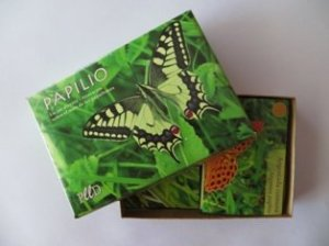 Papilio2